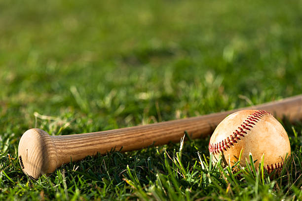 youth league baseball  close up - baseball bat stock photos and pictures