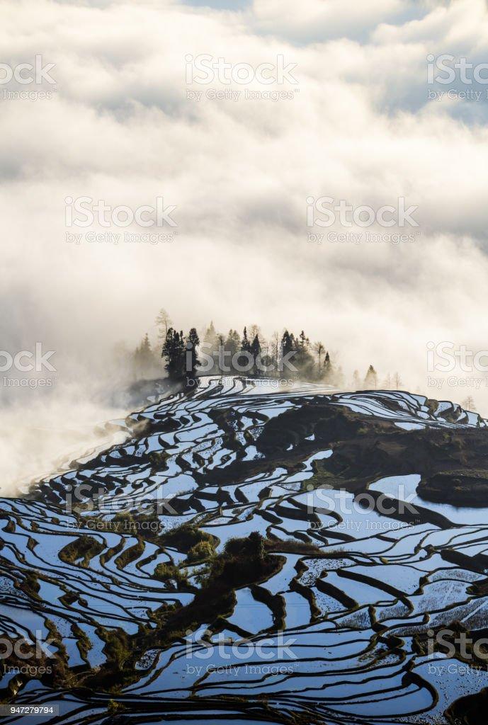 Yuanyang Reis Terrasse bei Sonnenaufgang, Provinz Yunnan, China – Foto