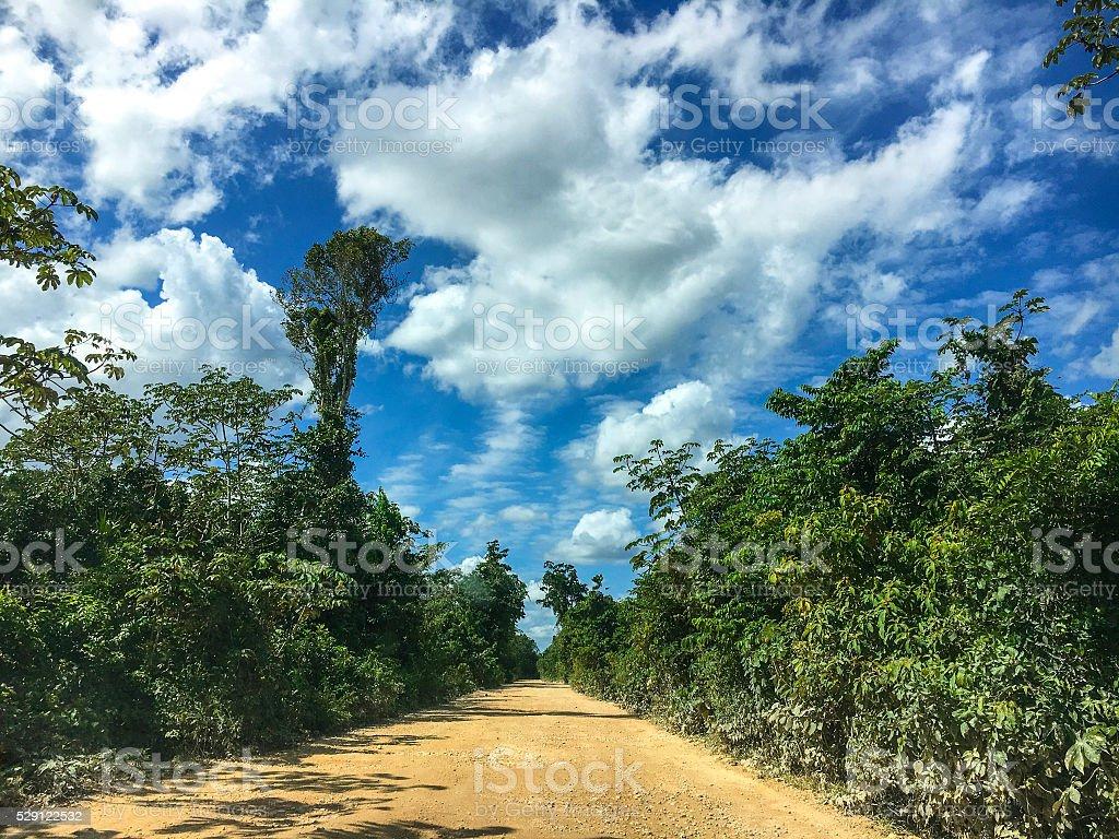 Yucatan backroad stock photo