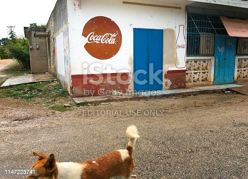 Dzitnup, Yucatan, Mexico: A dog walking down a village street past a mini-market painted with a Coca Cola ad. Dzitnup is a few kilometers outside Valladolid.