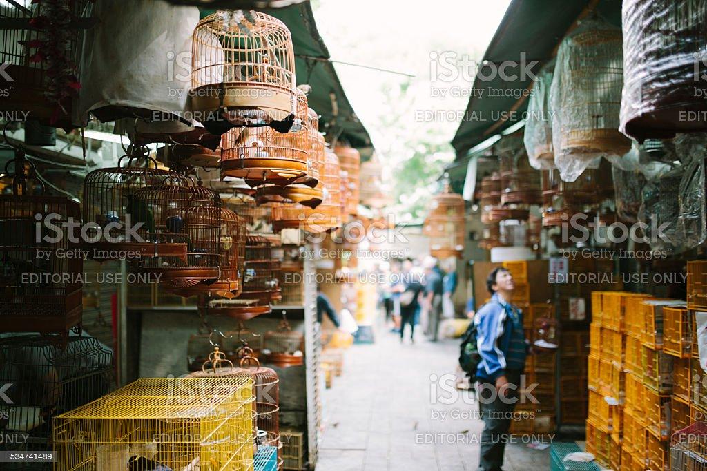 Yuen Po Street Bird Garden. Hong Kong stock photo