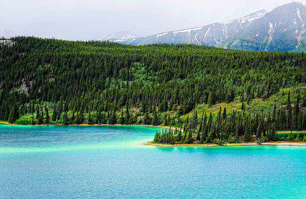 Yukon Emerald Lake Emerald Lake with beautiful turquoise water and snow peaks near Whitehorse, Yukon emerald lake stock pictures, royalty-free photos & images
