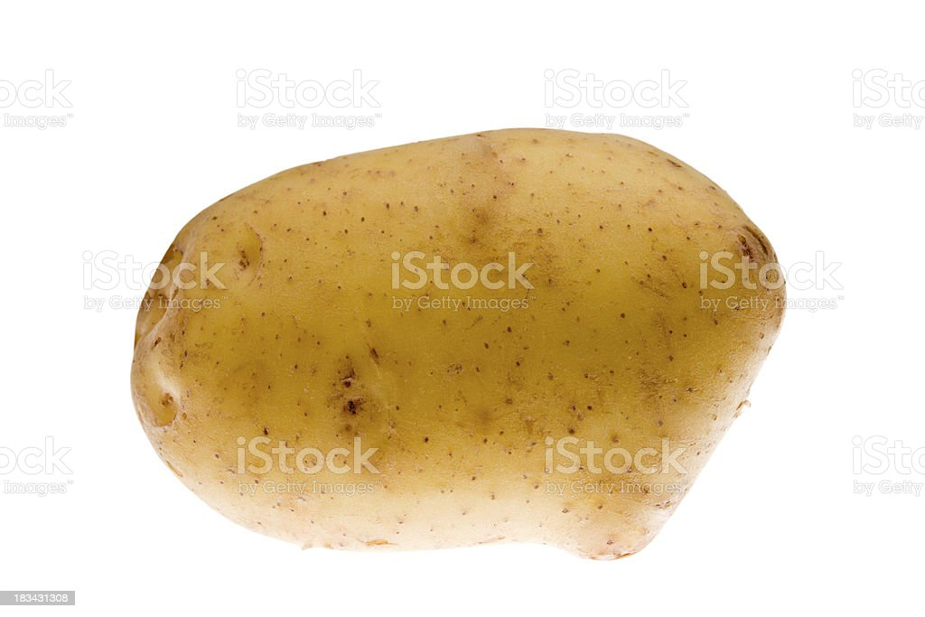 Yukon Gold Potato Isolated royalty-free stock photo
