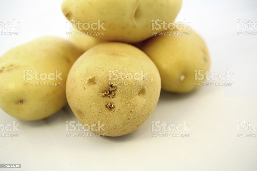 Yukon Gold Potatoes royalty-free stock photo