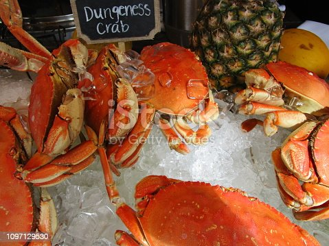 A display of a few orange crabs on ice with a small sign identifying them as Dungeness crab with a pineapple and lemon on the side.