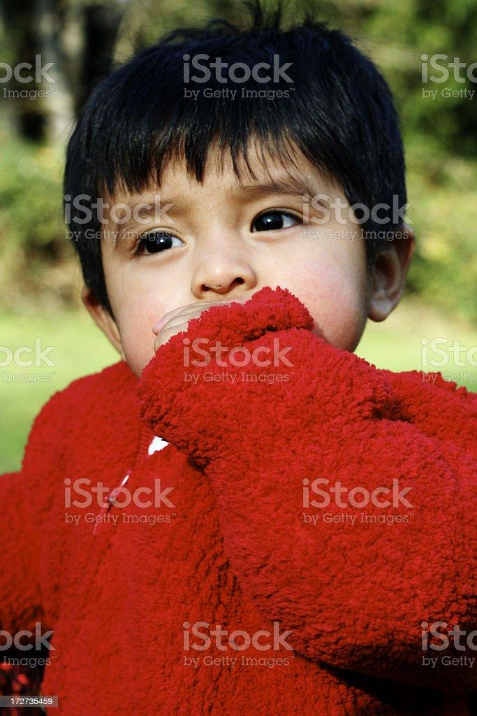 yummy sweater stock photo