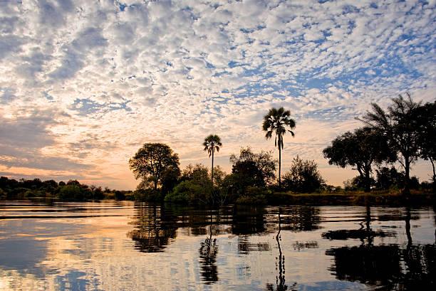 zambeze fluss bei sonnenuntergang, sambia - fluss sambesi stock-fotos und bilder