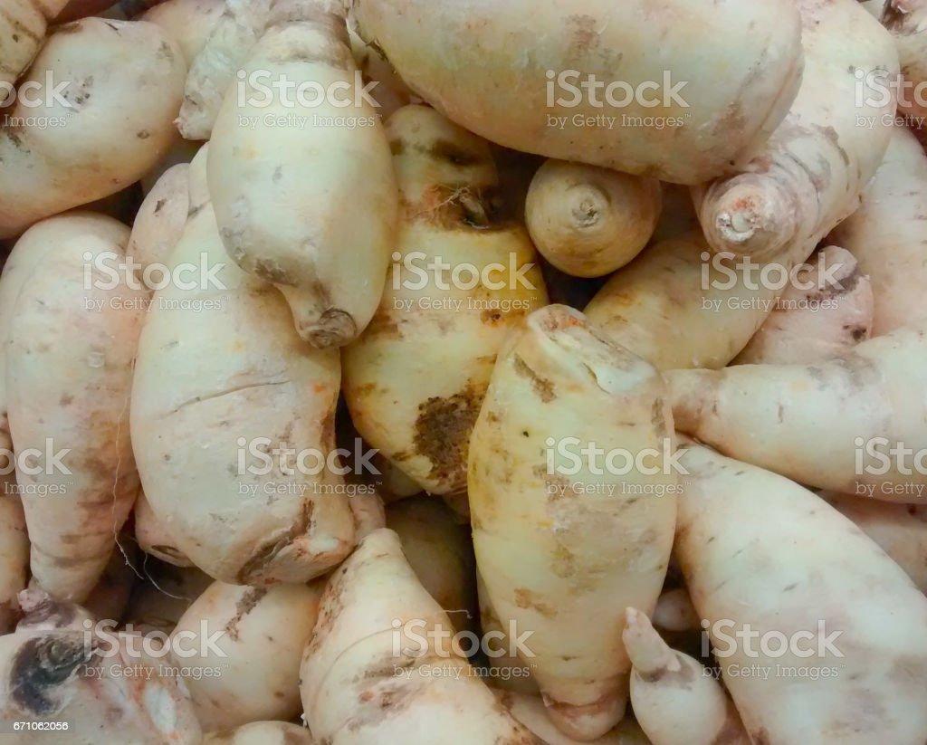 Zanahoria Blanca Stock Photo Download Image Now Istock Arroz blanco con zanahorias y chícharos. https www istockphoto com photo zanahoria blanca gm671062056 122908297
