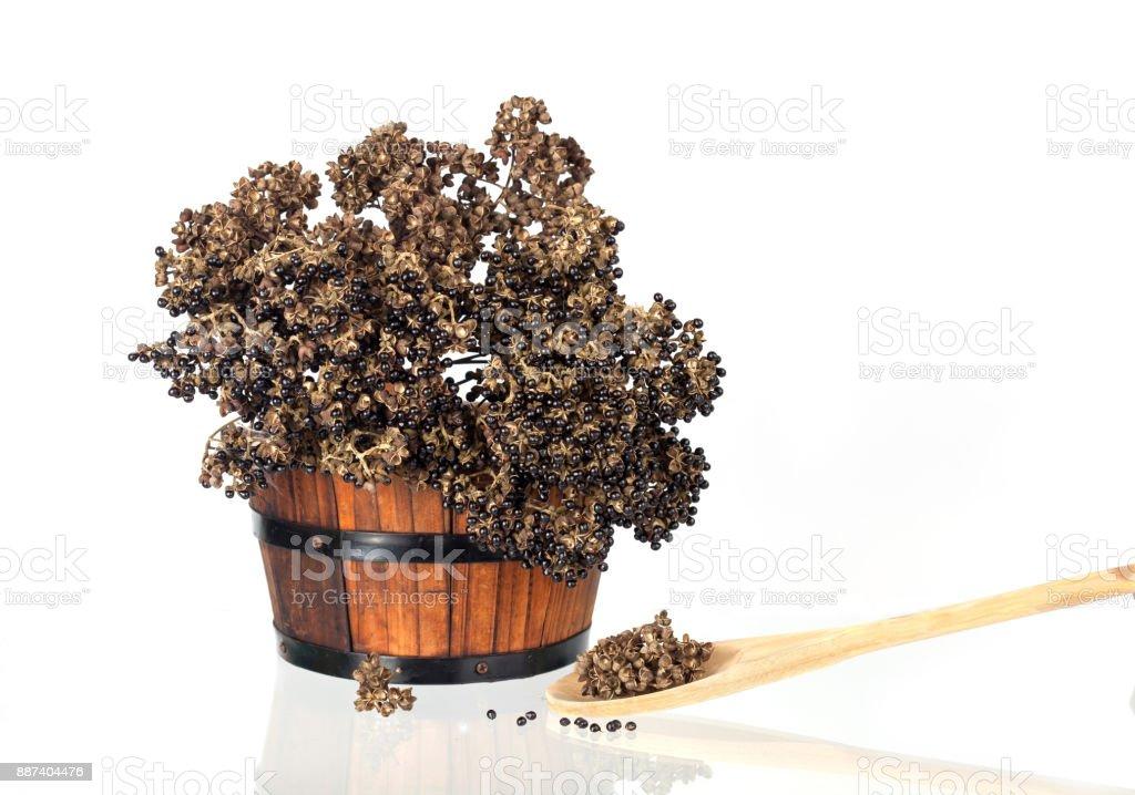 Zanthozylum limonella Alston herb test hot and spices on white background stock photo