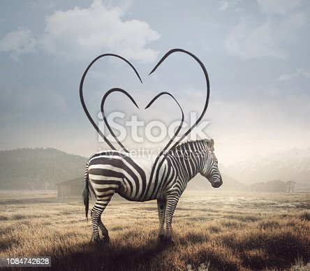 istock Zebra and heart stripes 1084742628