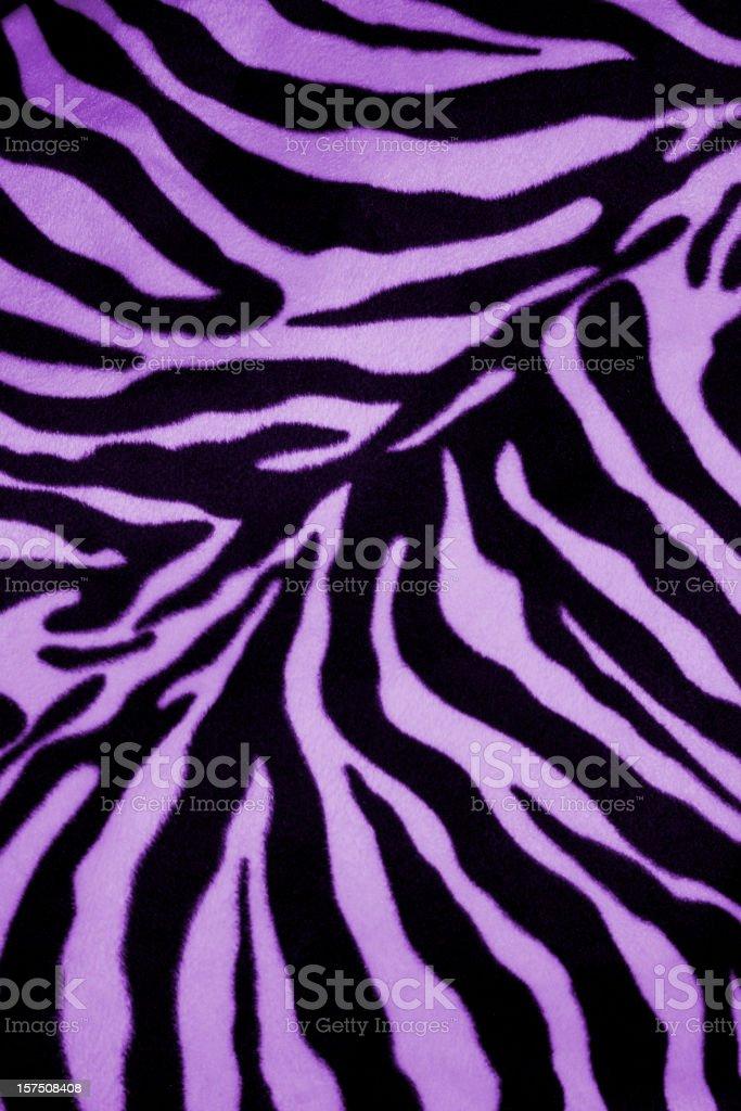 zebra background design stock photo