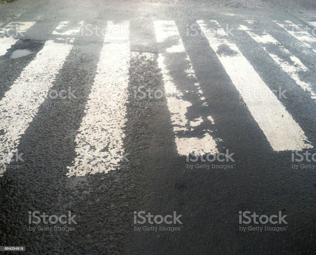 Zebra Cross at Wet Black Asphalt stock photo