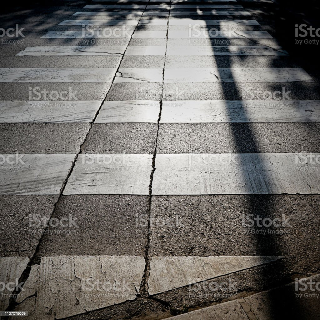 Zebra-Kreuzung im Rücklicht – Foto