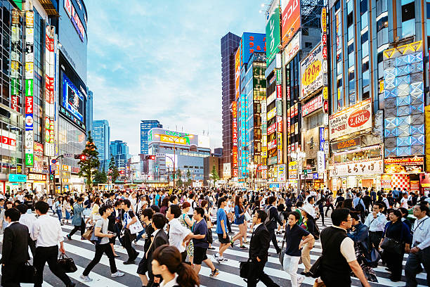 zebra crossing in shinjuku, tokyo at sunset - tokyo japan stock photos and pictures