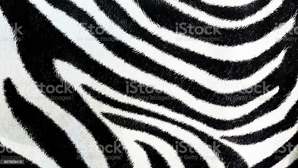Zebra pattern, black and white background, textured wallpaper stock photo