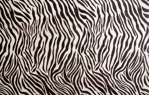 Zebra Padrão - Fotografias de stock e mais imagens de Arte