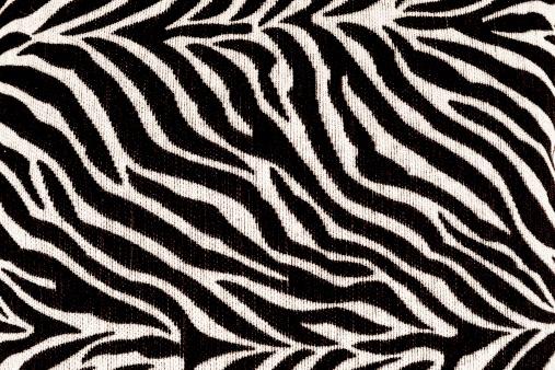 Zebra Padrão - Fotografias de stock e mais imagens de Abstrato