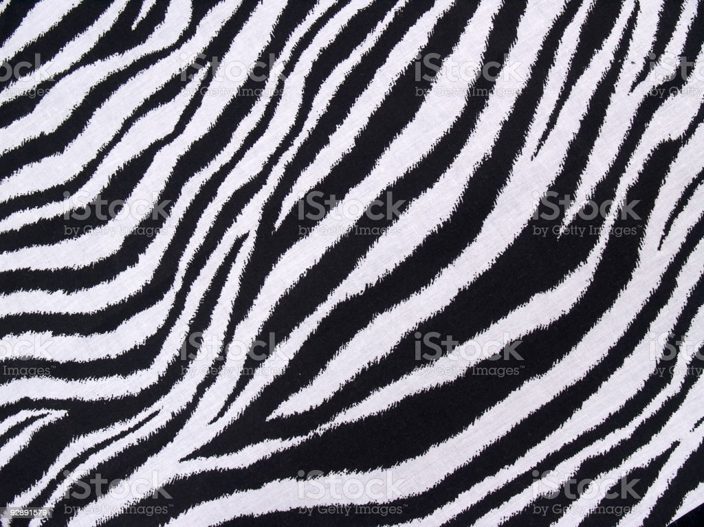 Zebra Pattern stock photo