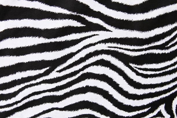 fundo de impressão de zebra - padrões zebra imagens e fotografias de stock