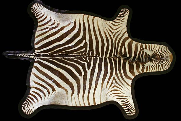 zebra tapete w/traçado de recorte - padrões zebra imagens e fotografias de stock