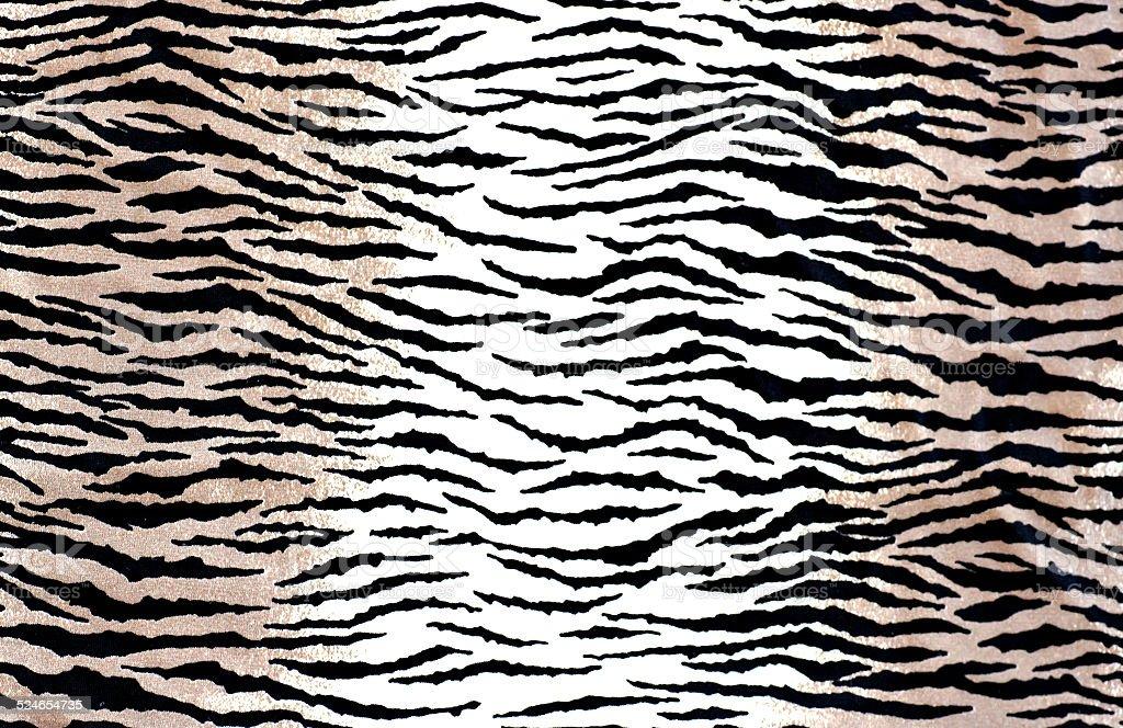 Cebra rayas - foto de stock