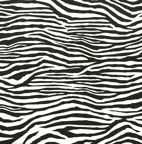 estilo de zebra padrão - padrões zebra imagens e fotografias de stock