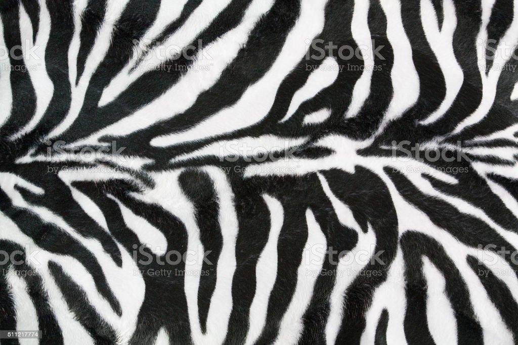 Zebra texture background stock photo