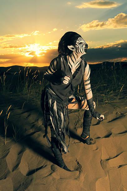 Cebra mujer en la puesta de sol - foto de stock