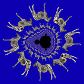Using decomposition tiling, a photo of a zebra is spun around a Mandelbrot fractal set of points. Each circle contains double the number of zebras of the one above it. Black and white stripes, dark blue background.