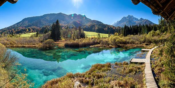 lac zelenci en slovénie. - slovénie photos et images de collection