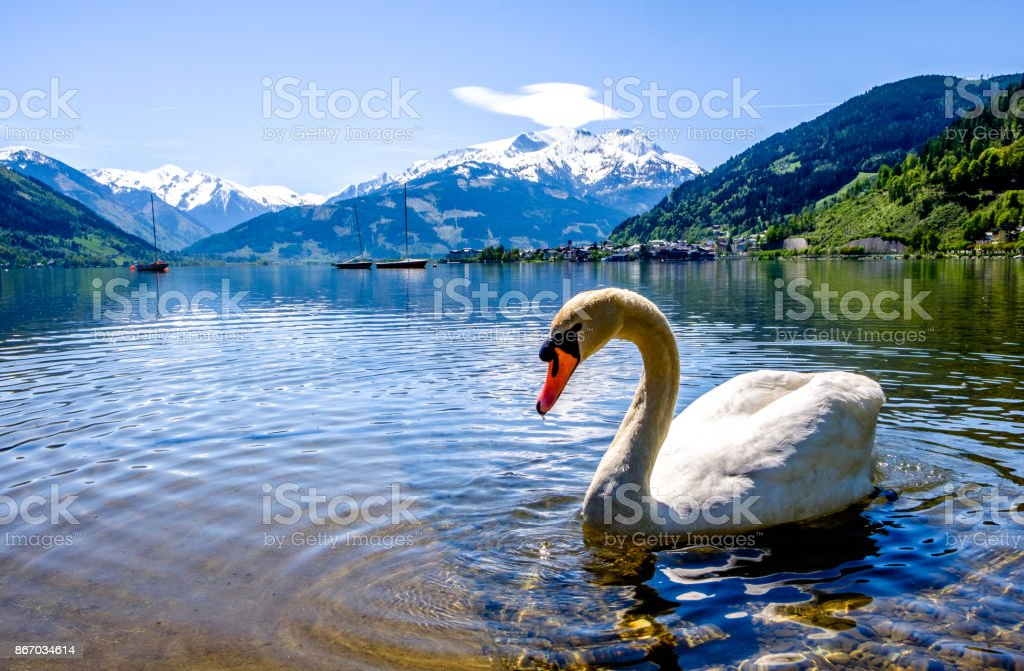 zeller see in austria stock photo