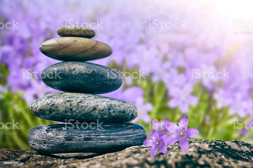 Zen Balancing Pebbles on flower background stock photo