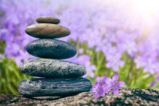 Zen Balancing Pebbles on flower background stock photo