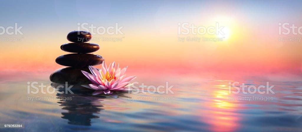 Zen Concept - Spa Stones et nénuphar sur l'eau au coucher du soleil photo libre de droits