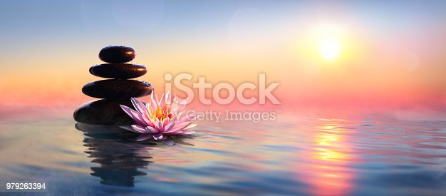 Pebble Stones With Waterlily On Lake At Dawn