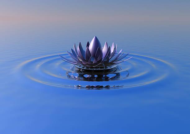 Zen-Blume – Foto