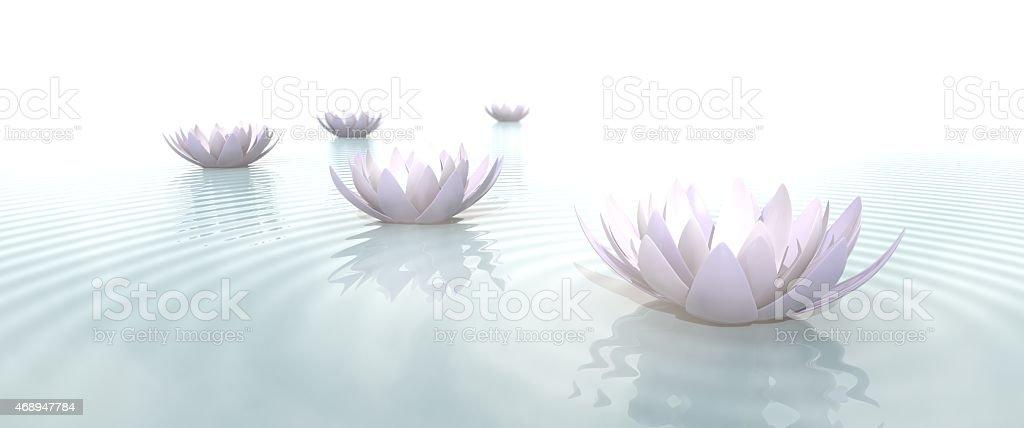Zen Flowers on water in widescreen stock photo