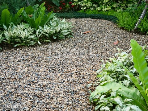 Front or Back Yard, Formal Garden, Ornamental Garden, Pebble, Plant