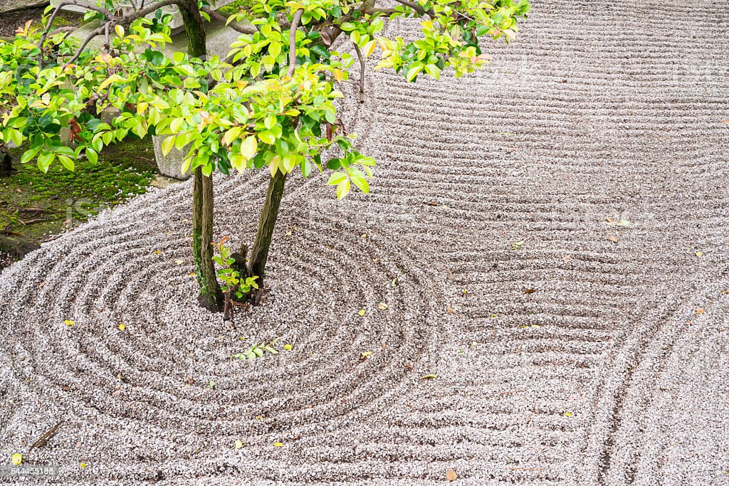 Zen Garten Detail In Chion Ji Tempel In Kyoto, Japan Lizenzfreies Stock Foto
