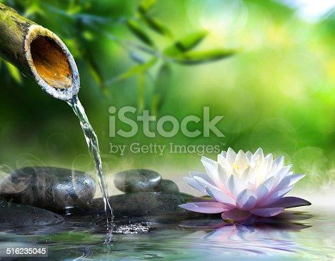 istock zen garden 516235045