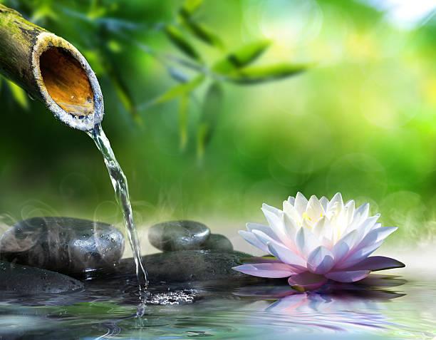 jardin zen - fontaine photos et images de collection