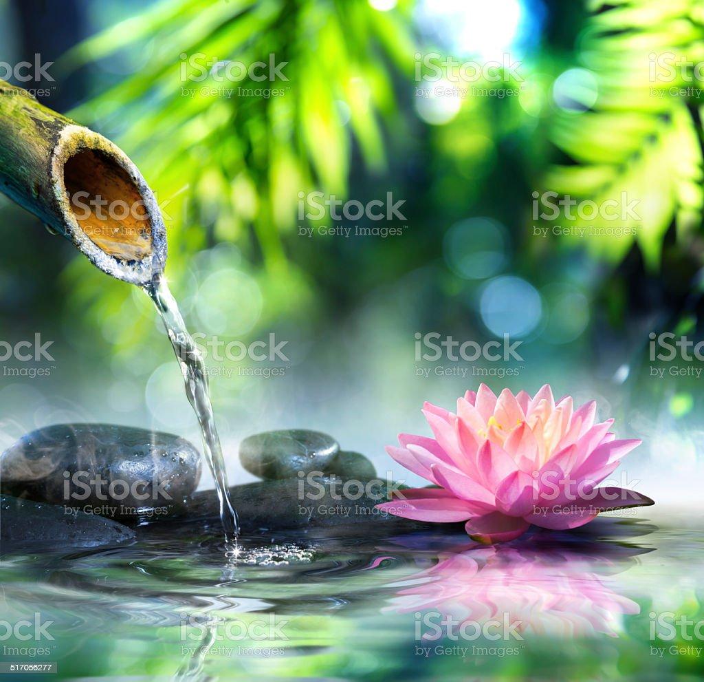 Jardin Zen De Pierres Noir Et Rose Waterlily – Photos et plus d ...