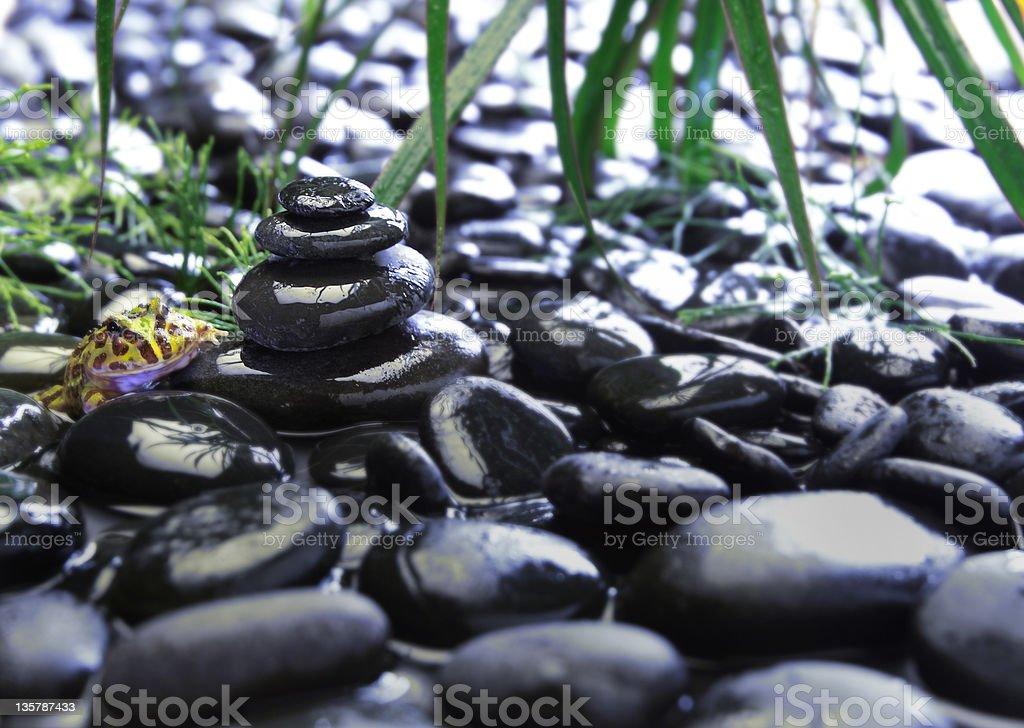 Zen garden with frog royalty-free stock photo