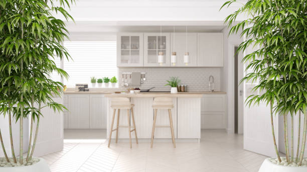 Zen interior with potted bamboo plant, natural interior design concept, scandinavian white kitchen with wooden details, island and stools, minimalist architecture concept idea stock photo