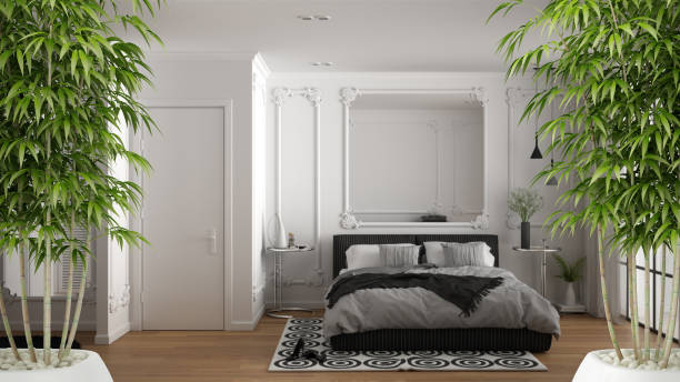 Zen interior with potted bamboo plant, natural interior design concept, minimalist luxury bedroom with carpets, double bed and window, carpet, luxury classic architecture concept idea stock photo