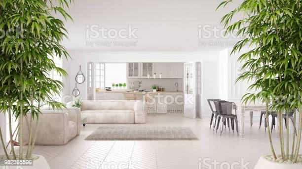 Photo of Zen interior with potted bamboo plant, natural interior design concept, minimalist white living and kitchen, scandinavian classic architecture