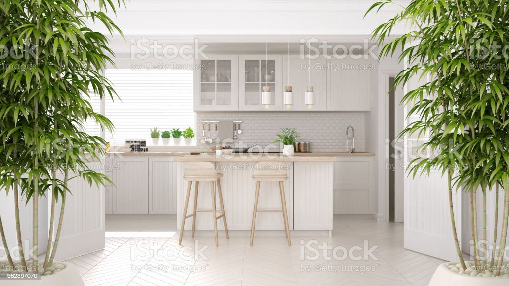 Zen Interior With Potted Bamboo Plant, Natural Interior Design Concept,  Classic Kitchen With Wooden