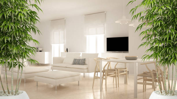 Zen interior with potted bamboo plant, natural interior design concept, modern contemporary living room open space with dining table and corner office, minimalist architecture stock photo
