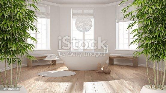 istock Zen interior with potted bamboo plant, natural interior design concept, classic spa bathroom with bathtub, minimalist scandinavian architecture 982368196
