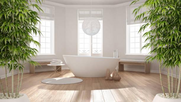 대나무를 화분에 심는 식물, 자연 인테리어 디자인 컨셉, 클래식 스파 욕조가 있는 욕실, 미니멀한 스칸디나비아 건축 선 인테리어 - 욕실 뉴스 사진 이미지